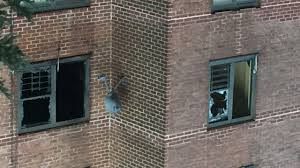 2 toddlers killed 10 others injured in bronx fire mother of