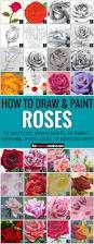 how to draw a rose color pencil art pencil art and acrylic
