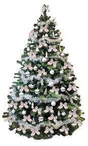 live christmas trees small live christmas trees s sydney for sale near me real decorated