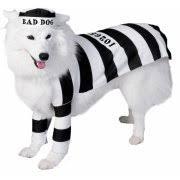 Target Dog Halloween Costumes Dog Clothing U0026 Shoes Walmart