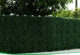 artificial boxwood wreath plastic shrubs synthetic green artificial boxwood wreath wall