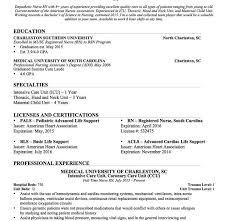 Entry Level Nurse Resume Sample by Download Resume Example Nurse Haadyaooverbayresort Com