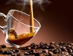 espresso coffee breville bes870xl barista express vs rancilio silvia v3 hsd