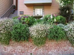 Front And Backyard Landscaping Ideas Fabulous Front Yards From Hgtv Fans Hgtv