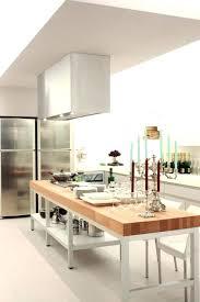 Kitchen Countertops Stainless Steel Delightful Stainless Steel Kitchen Island Countertops With