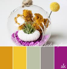 gold and gray color scheme an air plant inspired color palette gold yellow sage gray