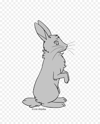 rabbit rabbit domestic rabbit hare line drawing bunny rabbit png