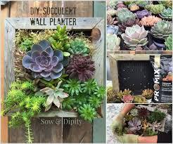wonderful diy low budget wall planters