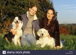 australian shepherd or golden retriever two women with australian shepherd and golden retriever puppy