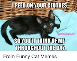 Clothes Meme - 25 best memes about clothing funny clothing funny memes