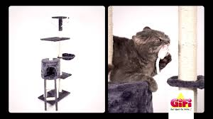 comment fabriquer un arbre a chat arbre a chat gifi spot tv fév2015 youtube