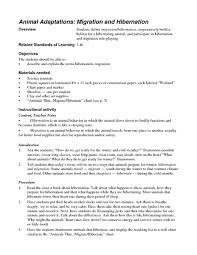 animal migration lesson plans u0026 worksheets reviewed by teachers