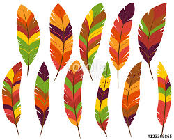 thanksgiving or fall colored turkey feathers stock image and