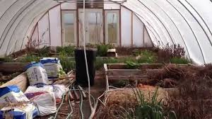 build an inexpensive greenhouse what high wind feels like in the