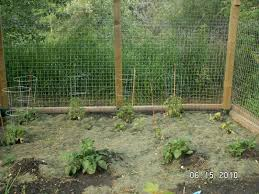 vegetable garden fence deer 28 images how to keep deer out of