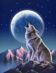 wolf moon mixed media by jerry lofaro