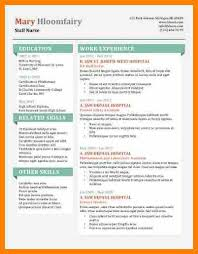 Fancy Resume Template 10 Fancy Resume Templates Character Refence