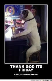 Thank God Its Friday Memes - funny thank god its friday memes thank best of the funny meme