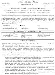 technical resume template resume exles templates free 10 technical resume