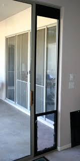 halepetdoor denver com dog and pet door installation