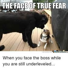 Meme Centar - the face of true fear memecentercom emetenterg when you face the