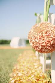 62 best carnations images on pinterest next day flowers and