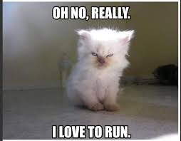 Funny Running Memes - run day the exchange fitness