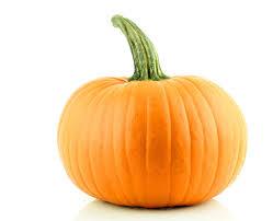 pumpkin no background what u0027s in season ohio farm bureau