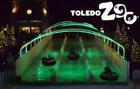 when does the lights at the toledo zoo start 31 best lights before christmas images on pinterest lights before