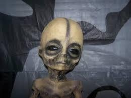 boyd bushman deathbed confession aliens