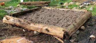 Wood For Raised Vegetable Garden by Raised Vegetable Garden Beds U0026 Ideas