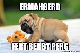 Ermahgerd Animal Memes - image jpg