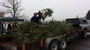 christmas tree wreath recycling u2013 recycle even more