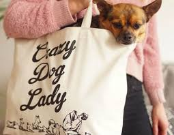 Crazy Dog Lady Meme - destroyersclub 14 other hashtags to get your dog featured on