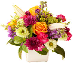 cheap same day flower delivery buy cheap flowers in melbourne cbd same day flower delivery