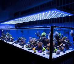 led aquarium lights for reef tanks top 5 best led lights for reef tank in 2018 market review by