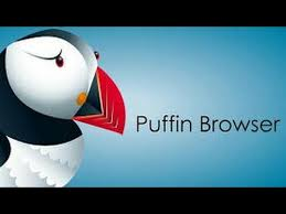 puffin pro apk puffin browser pro apk for android v6 1 4 16005