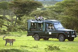 african safari car africa point and african conservation foundation launch