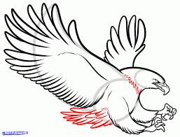 eagle simple drawing how to sketch an eagle in pencil draw an