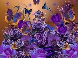 Roses And Butterflies - beautiful colors of my fav color purple butterflies