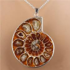necklace pendant shell images Hot madagascar sea nautilus ammonite shell chain gemstone pendant jpg