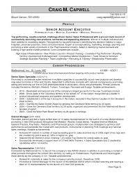 sample profile resume sales representative profile resume dalarcon com sales representative profile resume dalarcon