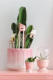 Cactus Planter by 266 Best Cacti Succulents Plants Images On Pinterest Plants