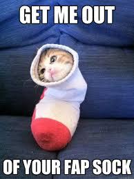 Sock Meme - get me out of your fap sock sock cat quickmeme