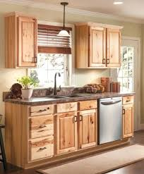 interior of a kitchen shallow depth base cabinets deltaqueenbook