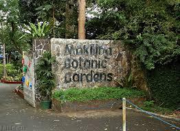 Up Los Banos Botanical Garden Makiling Botanic Gardens Mapio Net