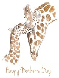 s day giraffe happy s day to all the momma s on imgur album on imgur
