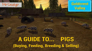 farming simulator 17 ps4 a guide to pigs buying feeding