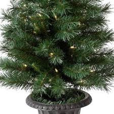 Decorative Trees With Lights Porch Christmas Tree 4 U0027 Potted Westbrook 70 Clear Lights True