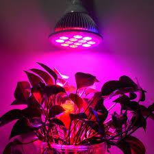 hydroponic led grow lights auraglow 24w hydroponic full spectrum greenhouse led grow light bulb